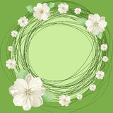 White flowers and round Stock Photos