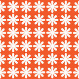 White flowers of seamless pattern Stock Photography