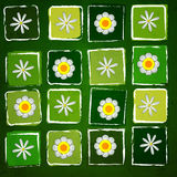 White flowers in squares over green old paper background Royalty Free Stock Images