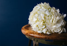White Flowers on Stool. Pretty white flowers on an antique stool in front of a navy blue background Royalty Free Stock Photo