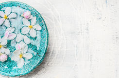 White flowers in turquoise blue water bowl on light shabby chic wooden background, top view, place for text. Wellness and spa. Concept. Spring blossom stock photo
