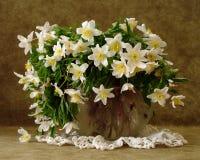 White flowers in vase Stock Images