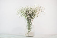 White flowers in a vase stock photos