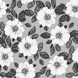 White flowers. Vector seamless floral pattern with hand drawn flowers Royalty Free Stock Photography