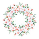 White flowers . Watercolor floral wreath, round frame. Floral frame, watercolor illustration, element for design Stock Photo