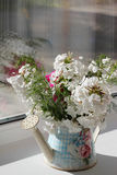 White flowers in a watering can Stock Photos