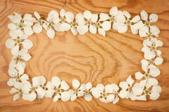 White flowers on wood Stock Images