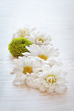 White flowers on wooden table Stock Photos