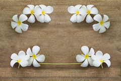 White flowers on wooden. Top view old wooden background with white flowers Stock Image
