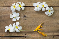 White flowers on wooden. Top view old wooden background with white flowers Royalty Free Stock Images