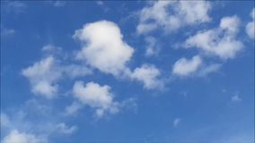 White Fluffy Cloud Floating on Vivid Blue Sky. Summer Time stock video footage