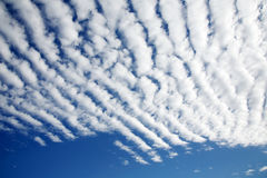 White fluffy clouds. In the blue sky Royalty Free Stock Photos