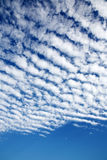 White fluffy clouds. In the blue sky Royalty Free Stock Photo