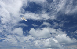 White, fluffy clouds and white fairy tern bird in the blue sky. Stock Images