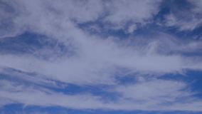 White fluffy clouds with wide stands float on the blue sky. Atmospheric phenomenon of nature white fluffy clouds with wide stands float on the blue sky on a stock footage