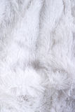 White fluffy texture Royalty Free Stock Image