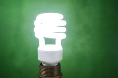 White fluorescent light bulb on green background Stock Photo