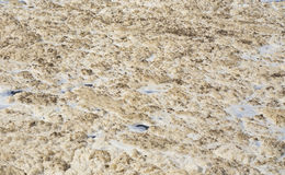 White foam on the surface of Nile River royalty free stock image