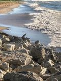 White foamy waves washing up on shore at state park. Waves on rocky beach at Indiana Dunes State Park in Indiana create a gorgeous view Royalty Free Stock Photos