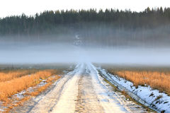 White Fog over Rural Road. Thick white fog hangs low over rural road and fields on a winter evening at sunset time Stock Images