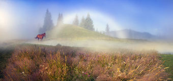 White foggy rainbow. In the mountains you can see the happy symbol- rare natural yavlenie- white foggy rainbow- special kind of halo. Occurs when the projection Stock Photo