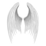 White folded angel wings. Stock Photo