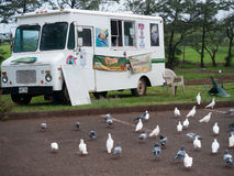 White food truck in Maui Hawaii. This hippie food truck is always a good place to stop and share stories. Selling hot dogs and other simple food. Pigeons wait Stock Images
