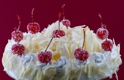 White Forest Cake Royalty Free Stock Images