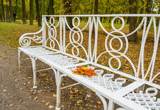 White forged bench in autumn park with abandoned maple leaves Royalty Free Stock Photography