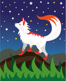 White fox spirit. The white spirit of a fox, looks at stars Stock Photos