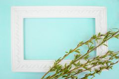 White frame with branches of green willow on a green background. Copy space in the middle for your text. Willow twigs stock photos