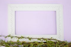 White frame with branches of green willow on a pink background. Copy space in the middle for your text. Willow twigs royalty free stock photo