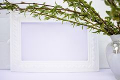 White frame with branches of green willow on a pink background. Copy space in the middle for your text royalty free stock photo