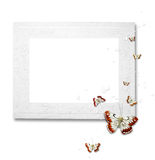 White frame with butterflies Stock Images