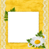 White frame with camomile and leaf. White frame with camomile, leaf and white laces on the yellow background Stock Image