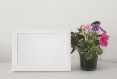 White frame and flower Royalty Free Stock Photo