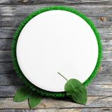 White frame with grass Royalty Free Stock Photo