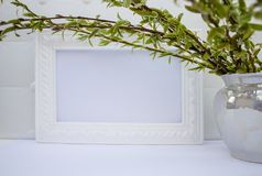 White frame with green willow branches on a white background. Copy space in the middle for your text royalty free stock photos