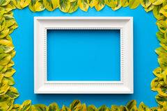 White Frame with Leaves on Blue Background Stock Photography