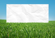 White frame in the meadow Royalty Free Stock Images