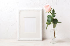 White frame mockup with rose in exquisite glass vase Stock Images
