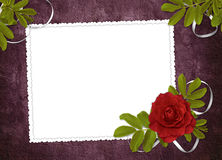 White frame with rose and ribbons Stock Photography