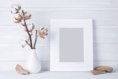 White frame. For your photo Stock Images