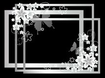 White frames with flowers. On the black background Royalty Free Stock Images