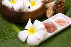 White frangipani. With salt soap crystal Stock Photo