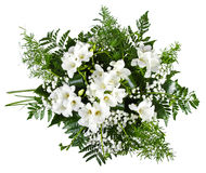 White freesia bouquet isolated on white Royalty Free Stock Image