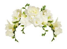 White freesia flowers in a beautiful arch arrangment. Isolated on white background Royalty Free Stock Image