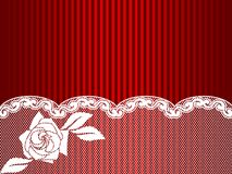 White French lace background Stock Image