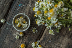 White and fresh flower camomile on a wooden old background Royalty Free Stock Photography