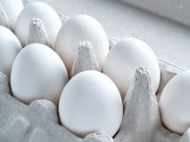 White fresh raw chicken eggs lie in a container for carrying egg. Fresh white raw eggs in shell eggs ready for cooking and diet food lie in an open cardboard Stock Photo